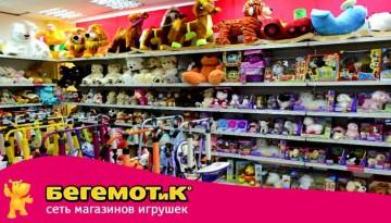 Франчайзинговый бизнес на игрушках